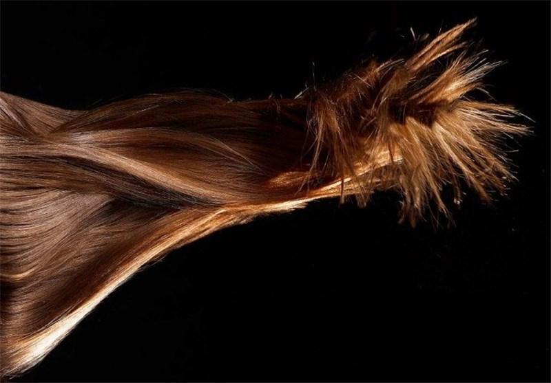 حراج مو های شخصی، شغلی به اصطلاح لاکچری!